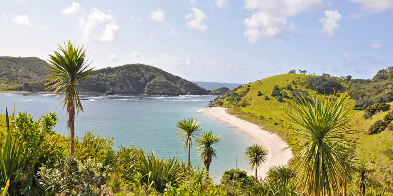 beautiful beaches of the bay of islands nz
